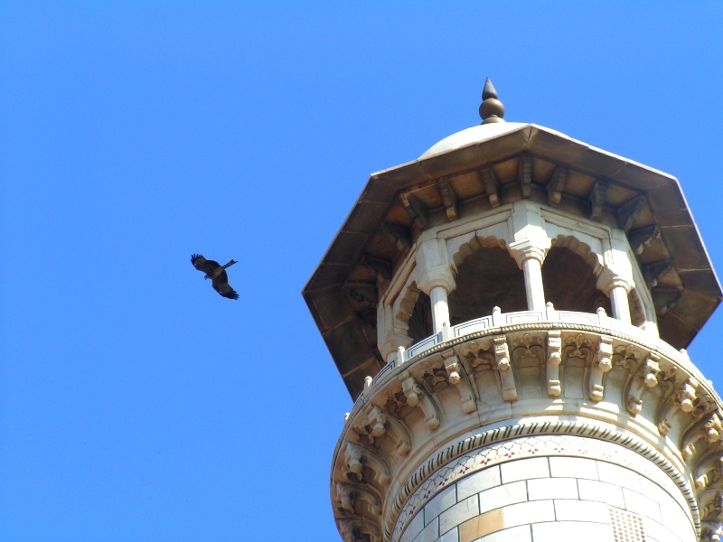 2008-09-24: Top of minaret